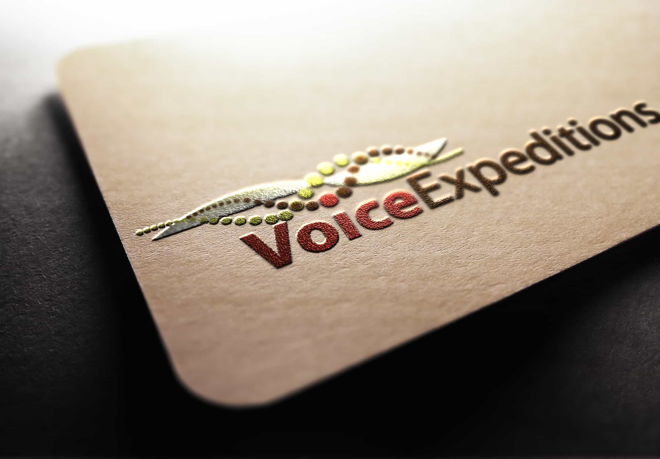 Voice Expeditions - Branding & Marketing